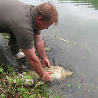 Žítková – rybník Javorovec 2012