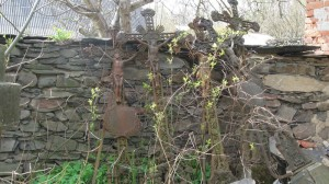 neudržovaný hřbitov