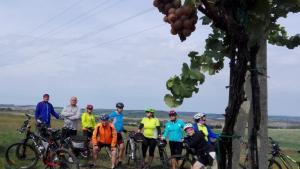 cesta vinohrady